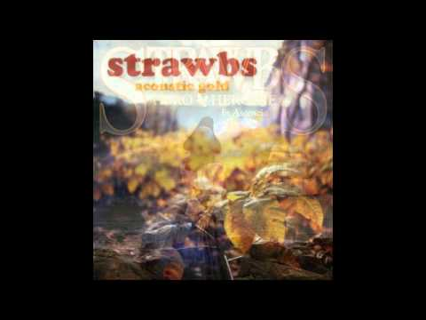 ACOUSTIC STRAWBS There Will Come The Day