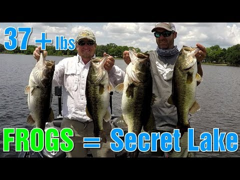 Fishing With FROGS For GIANT Bass (Secret Lake)