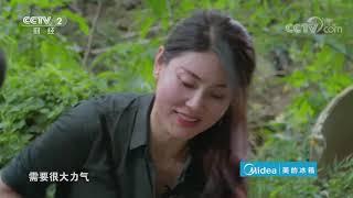 《秘密大改造》第三季 20191228| CCTV财经