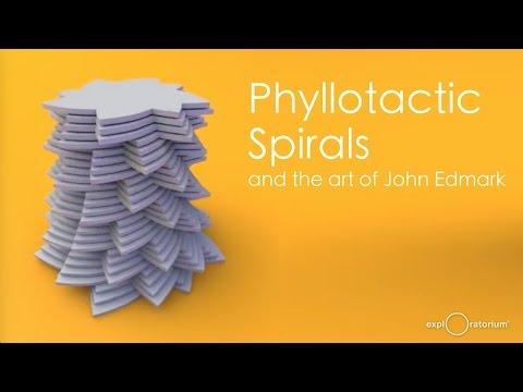 The Art of John Edmark | Talk by Paul Dancstep | Exploratorium