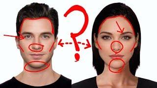 Diferencias ANATÓMICAS entre hombres y mujeres: CARA