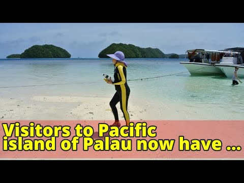 Visitors to Pacific island of Palau now have to sign a pledge to respect environment as tourist numb