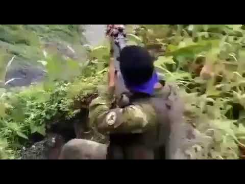 The 'Hidden War' in West Papua [Cafe Pacific] - 2019