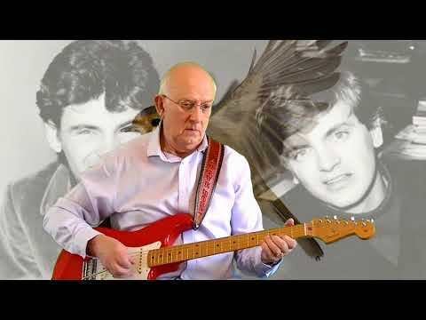 On the Wings of a Nightingale - The Everly Brothers - instrumental cover by Dave Monk