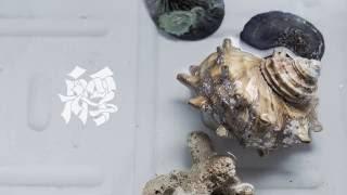 ナツノムジナ - 艀 / natsunomujina - Hashike(Official Video)