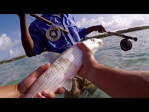 Fly Fishing Adventure - Catching My First Ever Bonefish In The Bahamas!!!