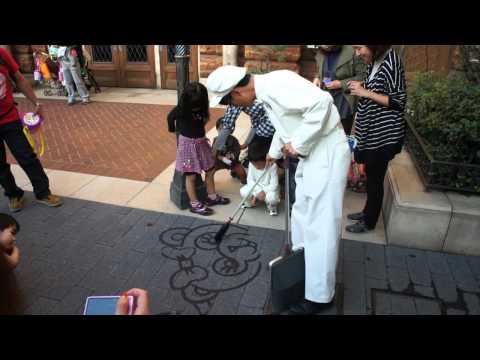 Tokyo DisneySea Talented Cleaner