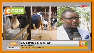 BUSINESS BRIEF | Nyeri farmers decry low prices for their products