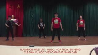 Flashmob Wildlife - CLB Dân vũ Học viện CSND
