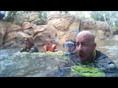Discovery Cove 2017
