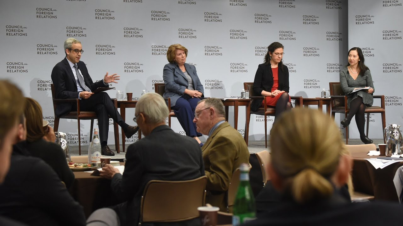The U S Opioid Epidemic Council On Foreign Relations >> The Growing U S Opioid Crisis Lessons From Around The World Youtube