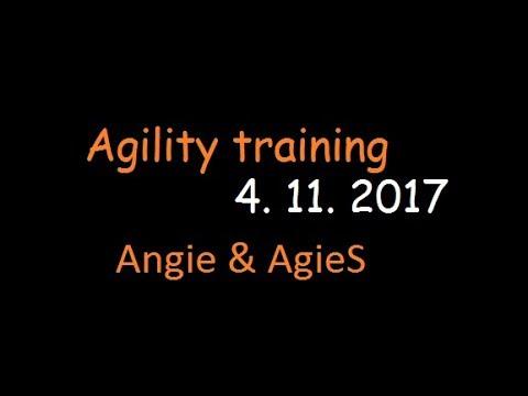 Angie & AgieS | Agility training | 4.11.2017