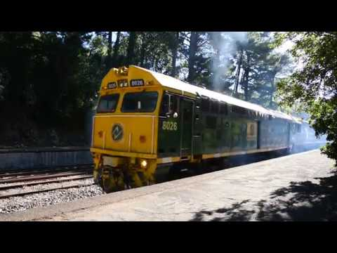 SCT freight train 6MP9 with 8026 SCT005 SCT013 SCT002