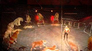 Circus Lion Tamer