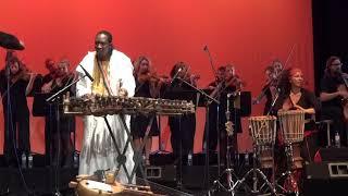 N'Faly kouyaté & Kora Strings- Tracks Wawa