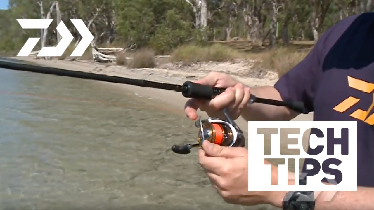 e1c1b1853ea Daiwa - Castinghttp://www.daiwafishing.com.au Casting spin reels for  distance and accuracy can be achieved with a little practice and some  proven techniques ...