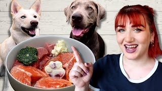6 Easy Ways To Add Raw To Your Pet's Diet