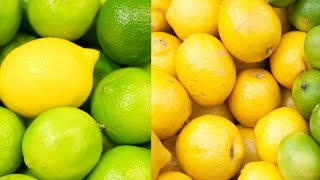 In this Video The Difference Between Lemon And Lime | Do You Know?