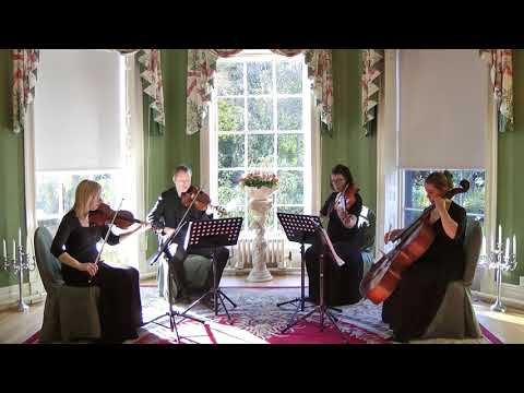 Begin The Beguine - Artie Shaw (Julio Iglesias) Wedding String Quartet