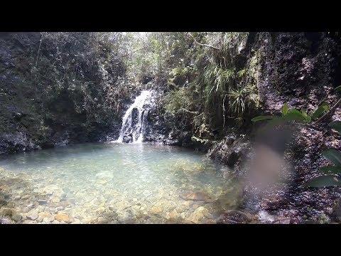 El Copal • Parque Nacional Alejandro Humboldt – by Villa Paradiso Baracoa