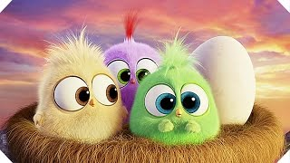 The HATCHLINGS Mother's Day Greeting! - ANGRY BIRDS