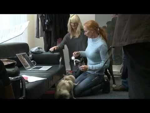 Andrea Sawatzki  Auf den Hund gekommen?