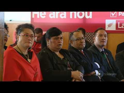 Labour Māori MPs back Little 100%