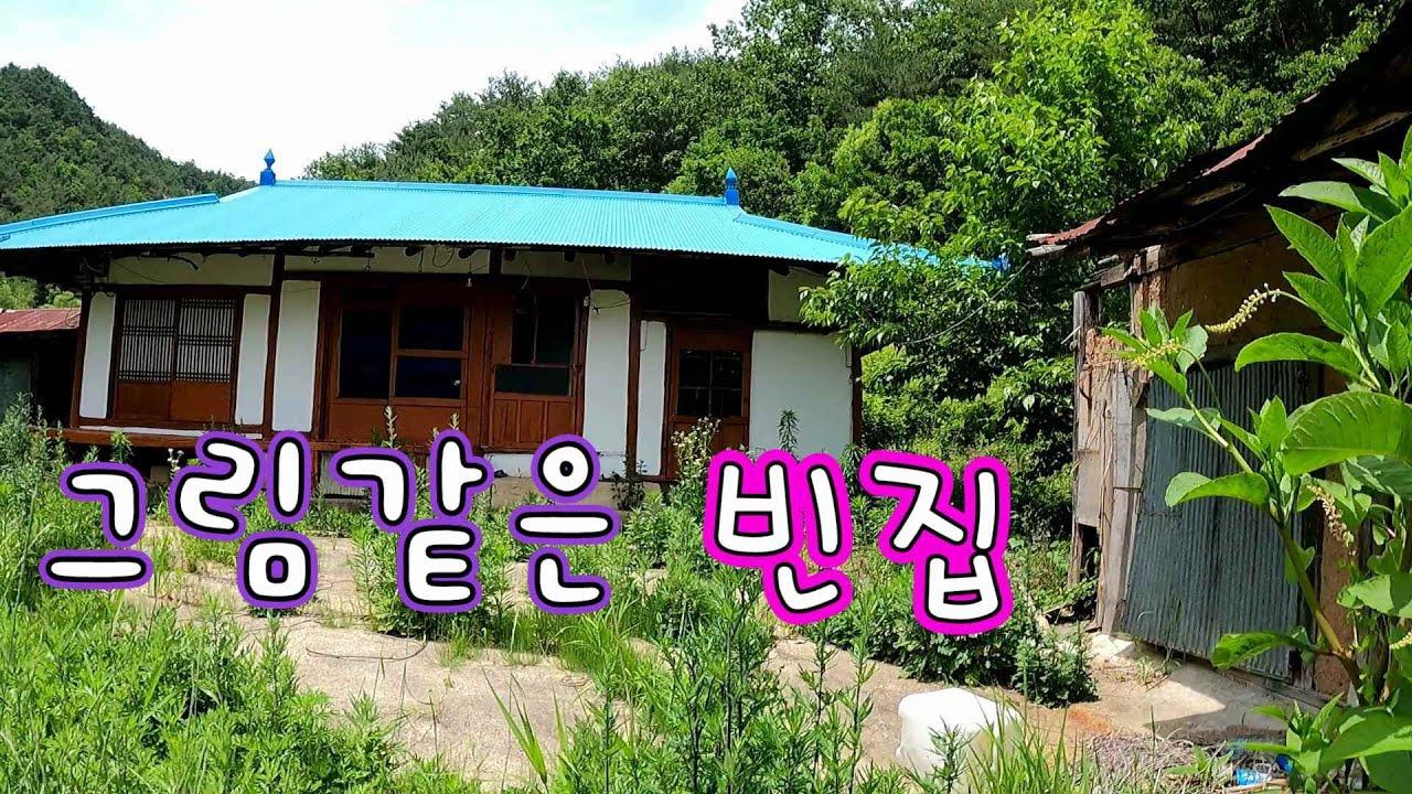 울진 큰쉰배미골 첩첩산중 화전민 빈집//  두꺼비와 포악한 뱀!!