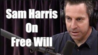 Sam Harris - Taking the Redpill on Freewill | Joe Rogan