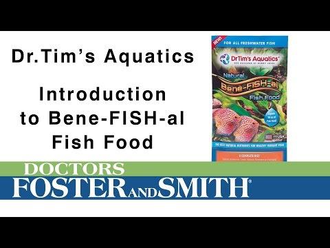 DrTim's Aquatics Bene-Fish-al Fish Food | DrsFosterSmith.com