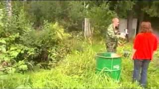 Ловля карася в малых водоемах
