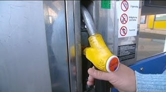 Frankreich will Benzinpreis durch Steuerminderung senken