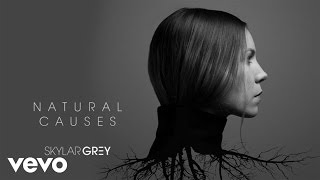 Skylar Grey Kill For You Audio Ft Eminem