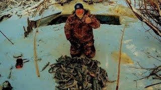 Рыбное Эльдорадо Сколько же здесь рыбы Рыбалка на паук