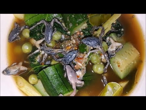 Amazing food of Dill soup with frogs ( Thai food recipes ) – Asian food at home