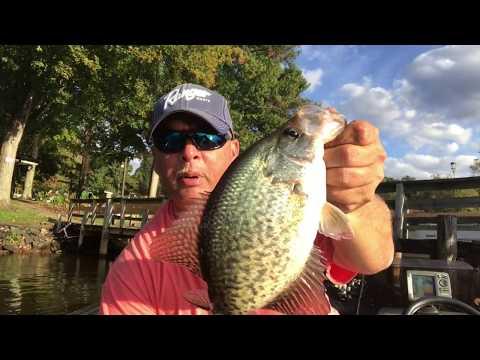 High Rock Lake, NC. - Fall SLAB Crappie Fishing