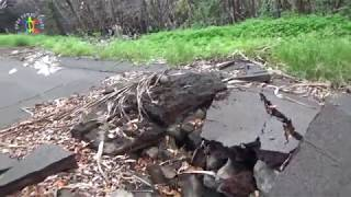 Kilauea eruption update walking the new lava road towards Pohoiki
