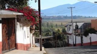 CALLES DE ERONGA -  HOMERO