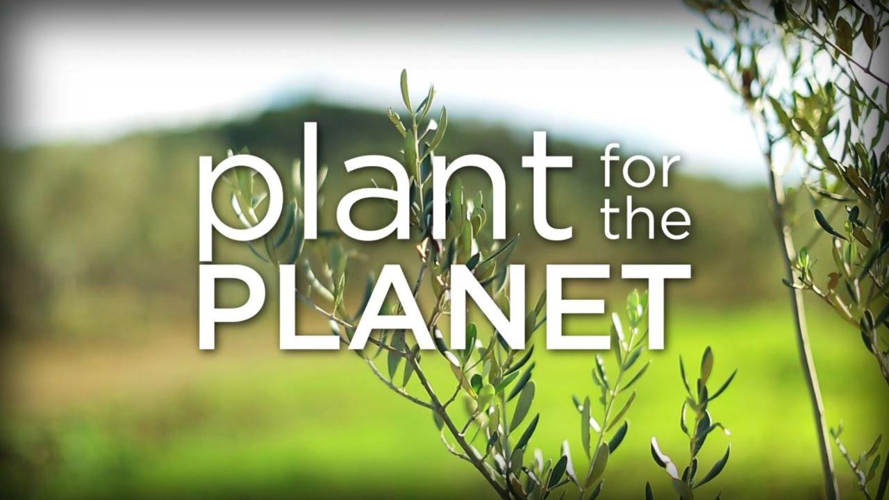 presentation film of plant for the planet youtube. Black Bedroom Furniture Sets. Home Design Ideas
