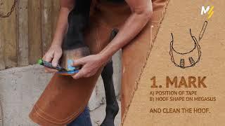 Кроссовки для лошадей вместо металлических подков - полезная новинка или понты?