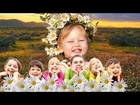 А ромашковое поле зацвело.  Н. Май, русский текст Л. В. Кириллова, исп.  Ю. Селиверстова