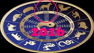 Восточный гороскоп для знака Собака на 2016 год