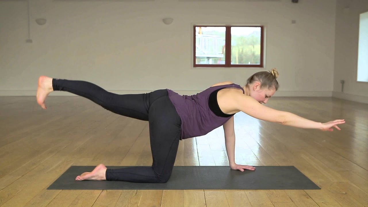 3 Point Lift Arm Extensions : Four point kneeling alternate arm and leg extension