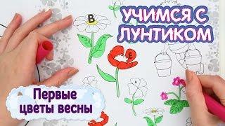 Учимся с Лунтиком - Первые цветы весны