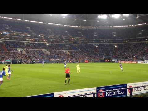 Schalke 04 (Tor)
