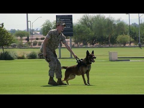 Marine Air Ground Task Force Demonstration In Phoenix