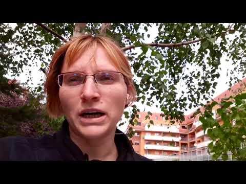 видео: Умова найму. Что включает договор аренды жилья?