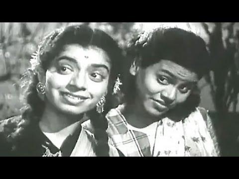 B. A. M. A. B Ed - Asha Bhosle, Adhikar Song