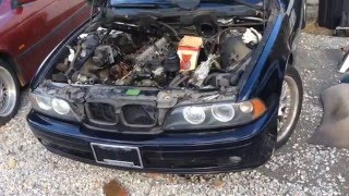 All the current projects going on, e39 engine swap and head gaskets e53 and e46 engine work too !!!