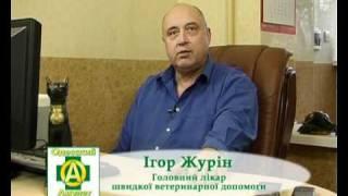 Ветеринарная клиника Одесский Амулет www.odesskiy-amulet.od.ua(, 2011-03-15T22:17:23.000Z)